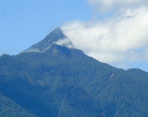 Pico Bonito